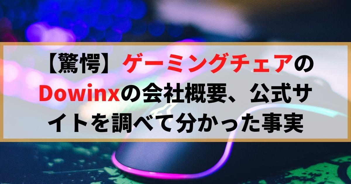 【驚愕】ゲーミングチェアのDowinxの会社概要、公式サイトを調べて分かった事実